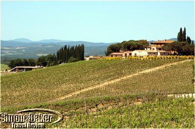 Altesino Estate