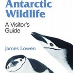 Antarctic Wildlife book cover
