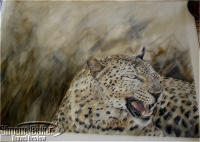 Leopard by Kelly Michau
