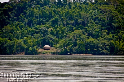 The banks of the Napo River are a tangle of dense rainforest