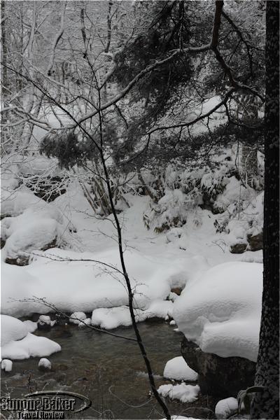 The Miya river