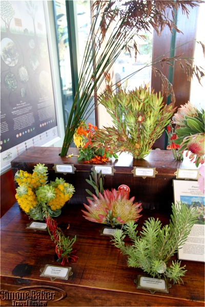 Seasonal plant displays in the entrance hall