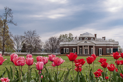The rear of Monticello overlooks vast expanses of lawns and flower borders