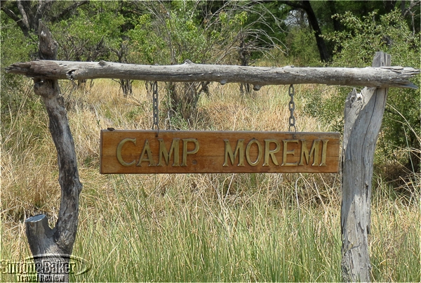 Welcome to Moremi