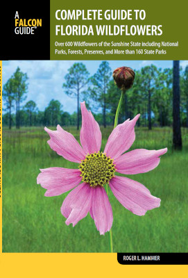Book showcases Florida wildflowers