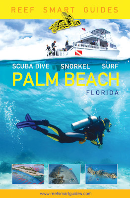 Snorkeling, diving enthusiasts release Palm Beach guide